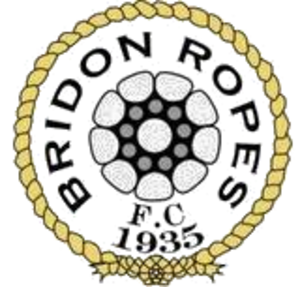 Bridon Ropes F.C. - Image: Bridon Ropes F.C. logo