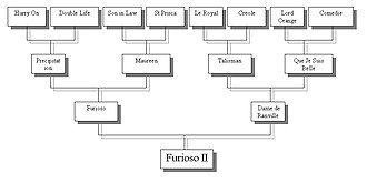 Furioso II - Furioso's lineage including the horses Precipitation, Son-in-Law, Double Life and Dark Ronald