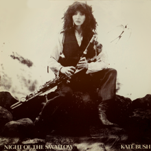 Kate Bush - Night of the Swallow.png