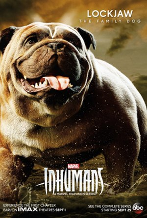 Lockjaw (comics) - Character poster featuring Lockjaw for the television series, Inhumans