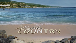 Malibu Country intertitle.png