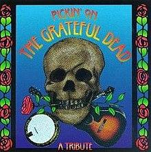 essays on the grateful dead