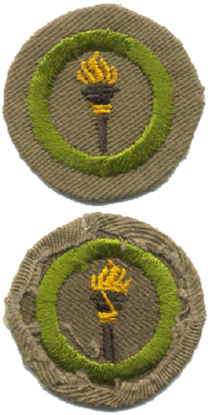 History of merit badges (Boy Scouts of America) - Image: Public Health merit badge, type B