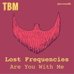 Are You with Me - Image: Are You With Me Lost Frequencies