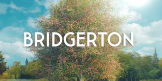 <i>Bridgerton</i> American period drama streaming television series