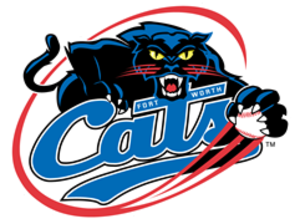 Fort Worth Cats - Image: Fort worth cats