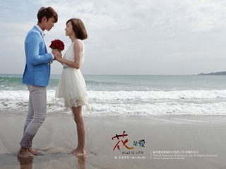 <i>What Is Love</i> (TV series) 2012 Taiwanese television series