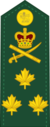 Canadian Forces Unification Rank Insignia OF-8.png