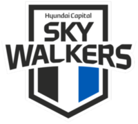 Cheonan Hyundai Capital Skywalkers new emblem.png