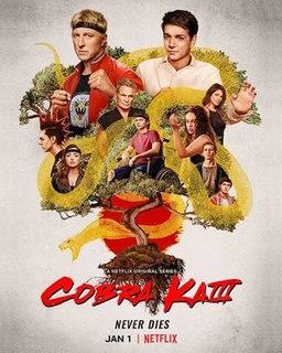 <i>Cobra Kai</i> (season 3) Season of television series