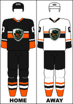 Jerseys for 2011/2012 season