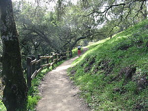 Pleasanton Ridge Regional Park - Hiking up to the ridge