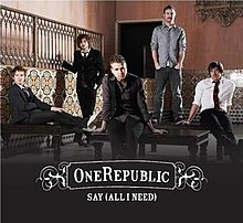 musica say all i need do onerepublic