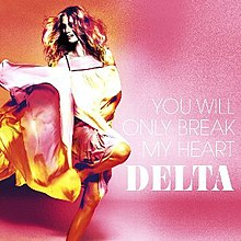 You Will Only Break My Heart Single Cover.jpg