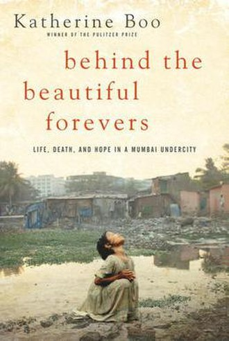 Behind the Beautiful Forevers - Image: Behind the Beautiful Forevers