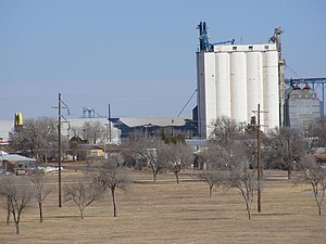 Muleshoe, Texas - One of the many grain elevators in the area. In the foreground is Muleshoe City Park.
