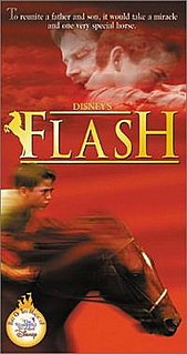 <i>Flash</i> (1997 film)
