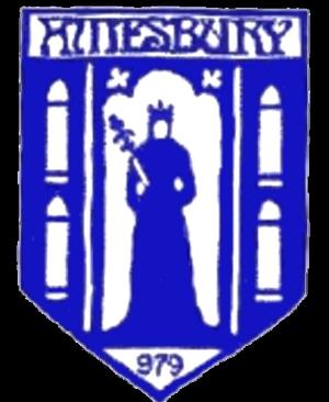 Amesbury Town F.C. - Image: Amesbury Town F.C. logo