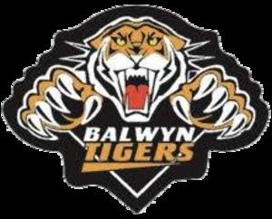 Balwyn Football Club - Image: Balwyn tigers logo