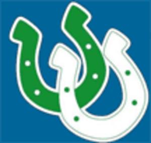 Arlington High School (Texas) - Image: Arlington High School TEXAS Logo