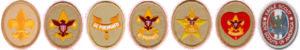 Ranks in the Boy Scouts of America - Image: Boy Scouting ranks (Boy Scouts of America)