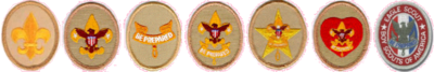 Boy Scouting ranks (Boy Scouts of America).png