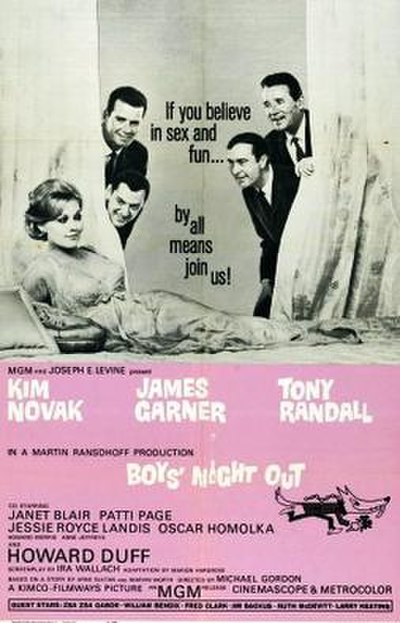 Picture of a movie: Boys' Night Out