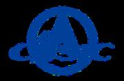CASIC logo.png
