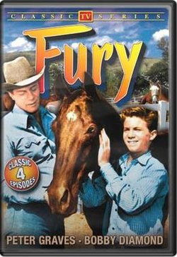 Fury DVD cover.jpg
