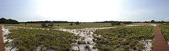 Loango National Park - Southern Park Camping Ground looking towards Ocean