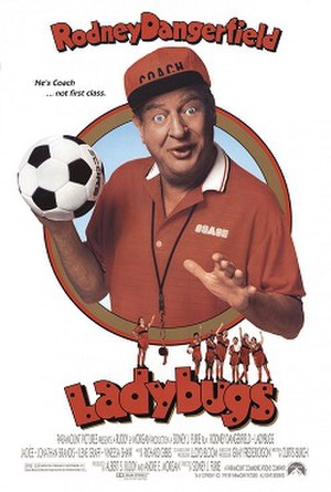Ladybugs (film) - Theatrical Release Poster