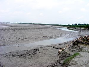 2008 Bihar flood - Silt deposition near Kosi embankment at Navbhata, Saharsa, Bihar, India