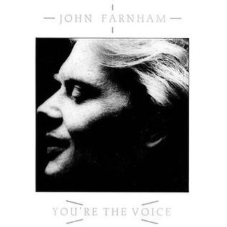 You're the Voice - Image: You're The Voice (Single)