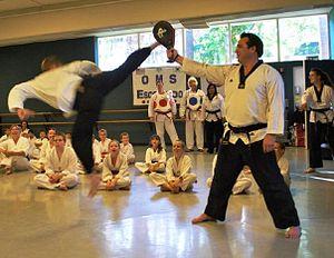Taekwondo - A jumping reverse hook kick