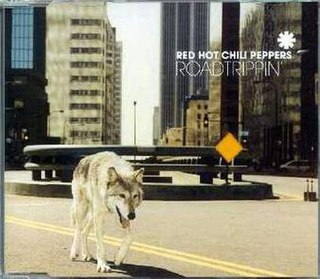 Road Trippin 2000 single by Red Hot Chili Peppers