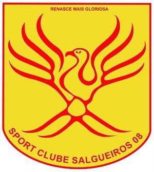 S.C. Salgueiros - Image: Salgueiros 08