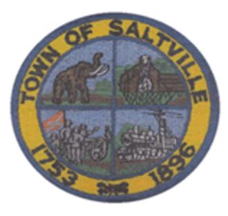 Saltville, Virginia - Image: Saltville Seal
