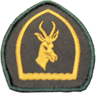 Scouts South Africa - Springbok Scout badge