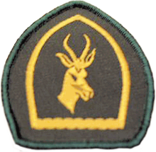 Scout leader service badge positions for sexual health