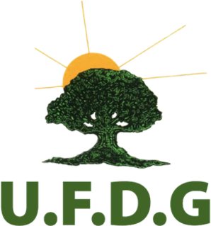 Union of Democratic Forces of Guinea Political party in Guinea