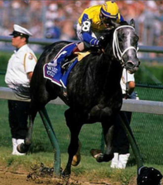 Winning Colors (horse) - Winning Colors at 1988 Kentucky Derby