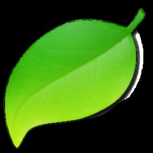 Coda (web development software) - Image: Codaicon