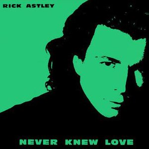 Never Knew Love (Rick Astley song) - Image: Never Knew Love Cover