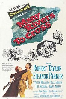 Many Rivers to Cross - Film Poster.jpg