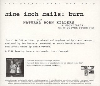 Burn (Nine Inch Nails song) 1994 song by Nine Inch Nails
