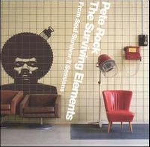 The Surviving Elements: From Soul Survivor II Sessions - Image: Survivingelements