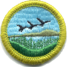 Fish and Wildlife Management merit badge, type J front.png