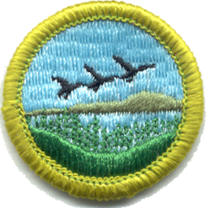 Merit badge (Boy Scouts of America) - Fish and Wildlife Management merit badge