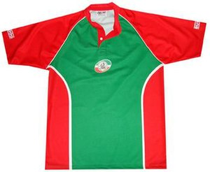 Kazan Arrows - Home shirt with traditional green and red colours.