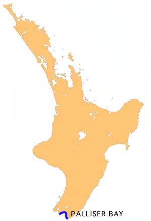 Palliser Bay - Location of Palliser Bay